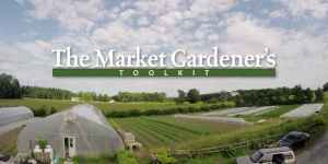 A picture of a market garden
